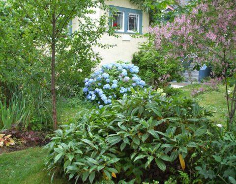 Taylor'd Gardens portfolio 3